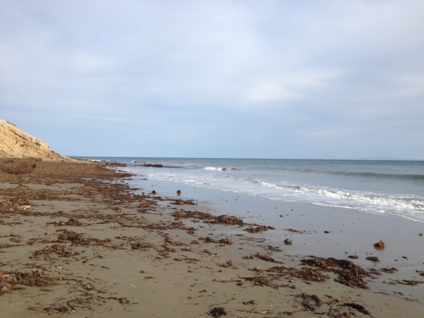 Gaviota State Beach
